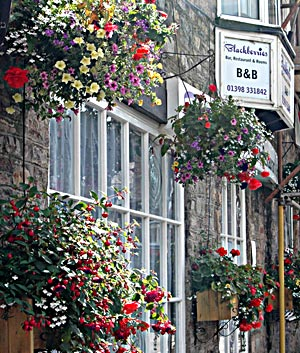 Bed and Breakfast Bampton Blackberries Bar Restaurant Rooms