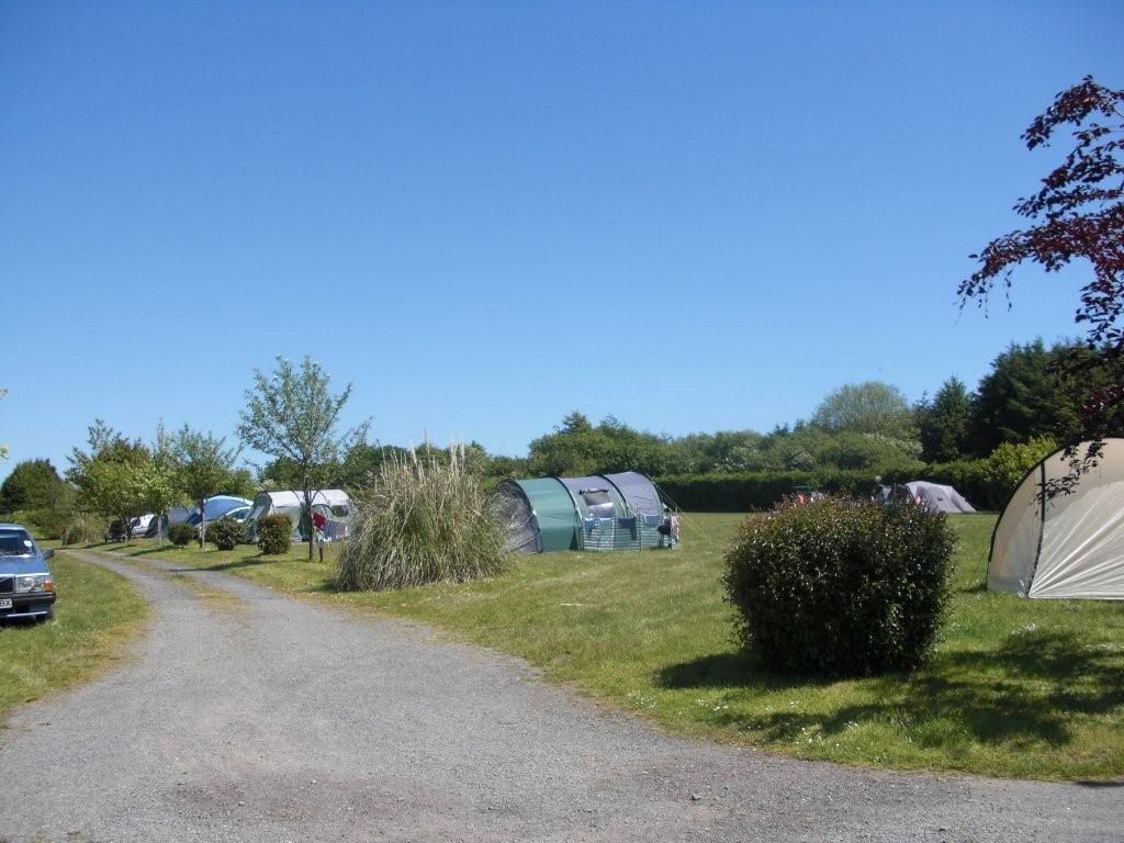 Dog Friendly Campsites Ireland