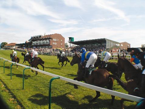 Sedgefield Racecourse is Stockton-on-TeesCampsite